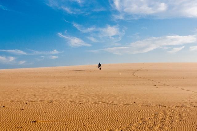 Alone_in_desert.jpg