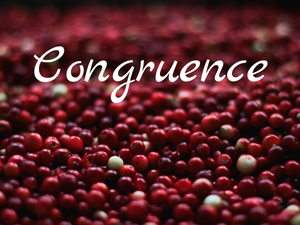 The Value of Congruence