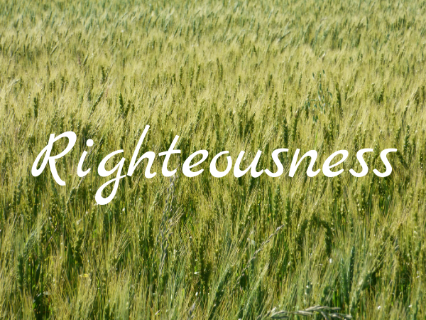 The Value of Righteousness